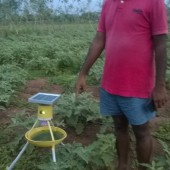 SAAL – Organic vegitables, solar powered fly catcher, Sevayur, Madurai