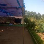 Lumiere Farm Spring Circle 2015, Varthur, Bangalore