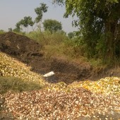 Farmer Paliwal, Kalameshwar, Maharashtra