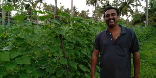 Renjith Ravindran, Young Farmer, Ashtamichira, Mala, Kerala