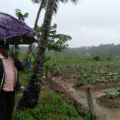 Joseph Pallan,Military Farmer, Mala, Kerala